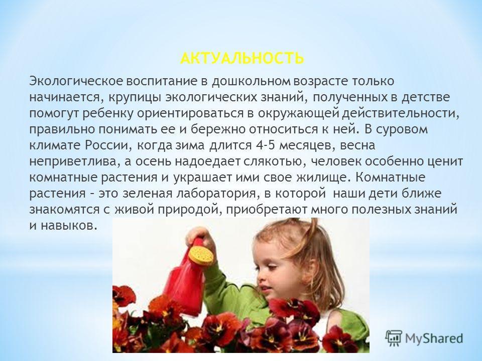 АКТУАЛЬНОСТЬ Экологическое воспитание в дошкольном возрасте только начинается, крупицы экологических знаний, полученных в детстве помогут ребенку ориентироваться в окружающей действительности, правильно понимать ее и бережно относиться к ней. В суров