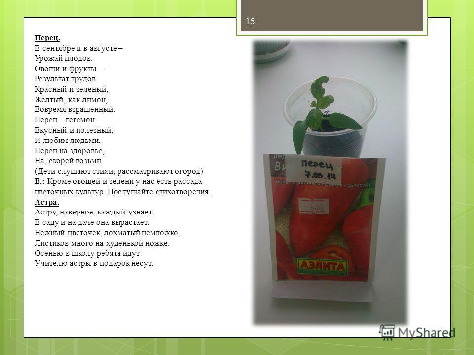Перец. В сентябре и в августе – Урожай плодов. Овощи и фрукты – Результат трудов. Красный и зеленый, Желтый, как лимон, Вовремя взращенный. Перец – гегемон. Вкусный и полезный, И любим людьми, Перец на здоровье, На, скорей возьми. (Дети слушают стихи