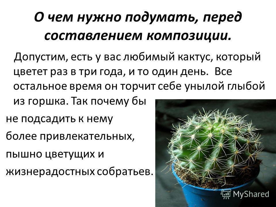 О чем нужно подумать, перед составлением композиции. Допустим, есть у вас любимый кактус, который цветет раз в три года, и то один день. Все остальное время он торчит себе унылой глыбой из горшка. Так почему бы не подсадить к нему более привлекательн