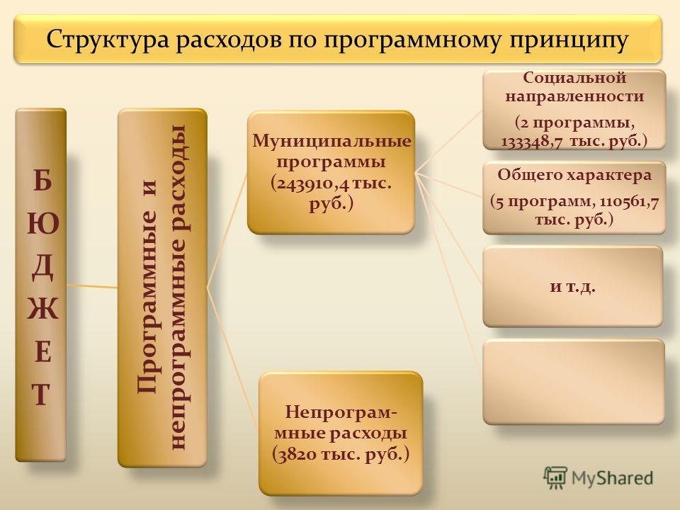 Структура расходов по программному принципу Программные и непрограммные расходы Муниципальные программы (243910,4 тыс. руб.) Социальной направленности (2 программы, 133348,7 тыс. руб.) Общего характера (5 программ, 110561,7 тыс. руб.) и т.д. Непрогра