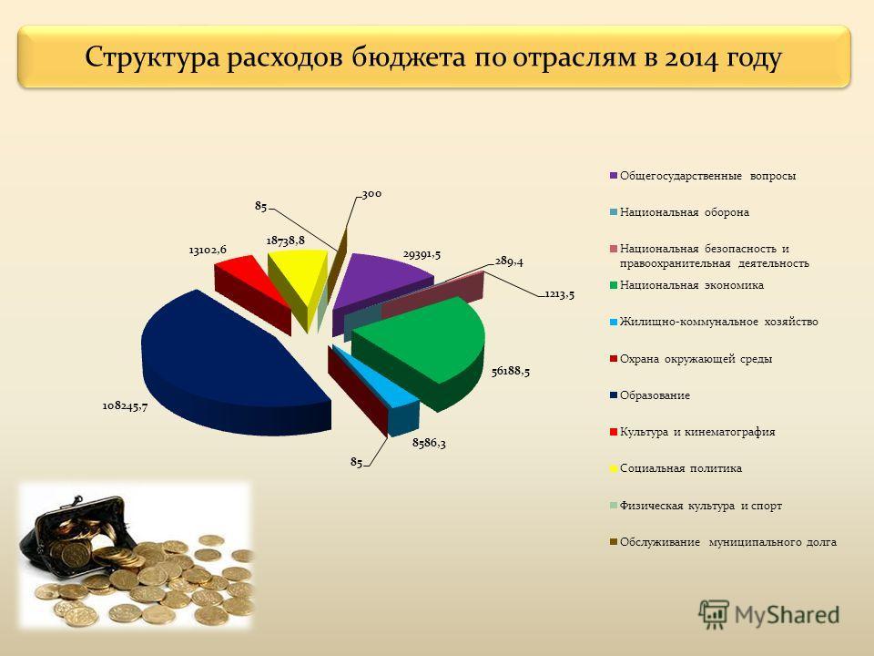 Структура расходов бюджета по отраслям в 2014 году
