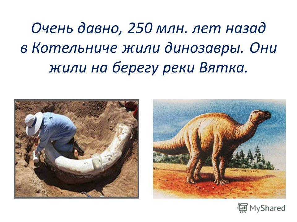 Очень давно, 250 млн. лет назад в Котельниче жили динозавры. Они жили на берегу реки Вятка.