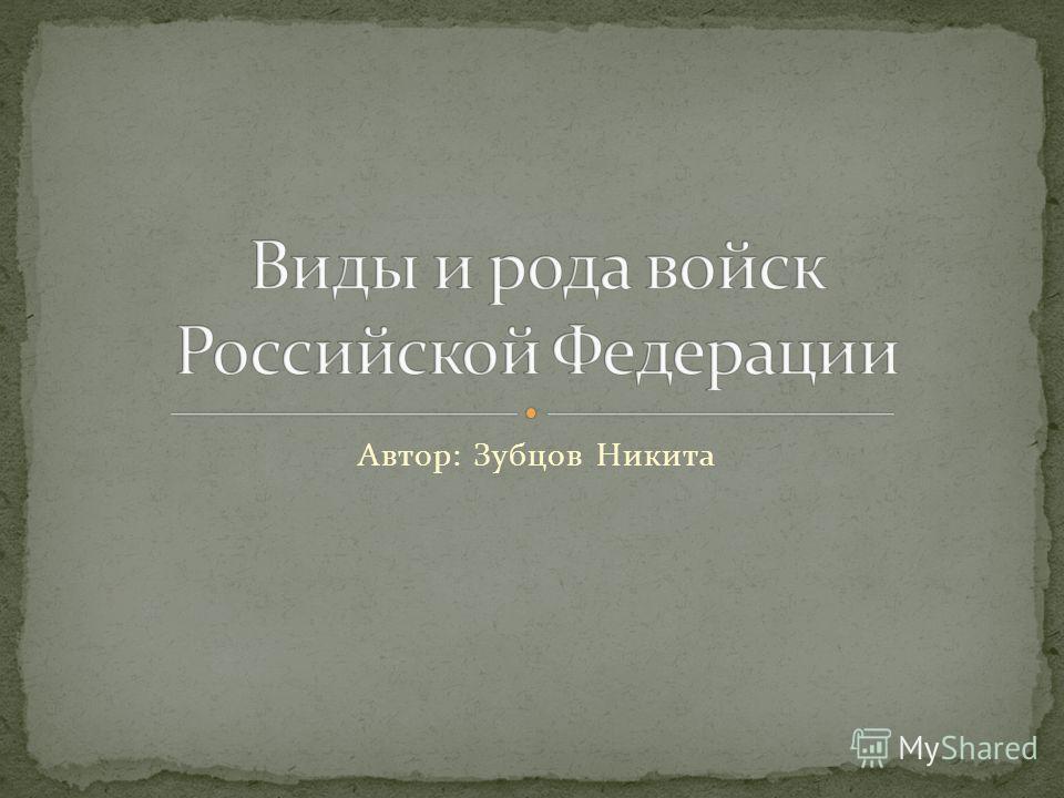 Автор: Зубцов Никита