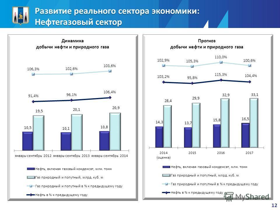 Развитие реального сектора экономики: Нефтегазовый сектор 12
