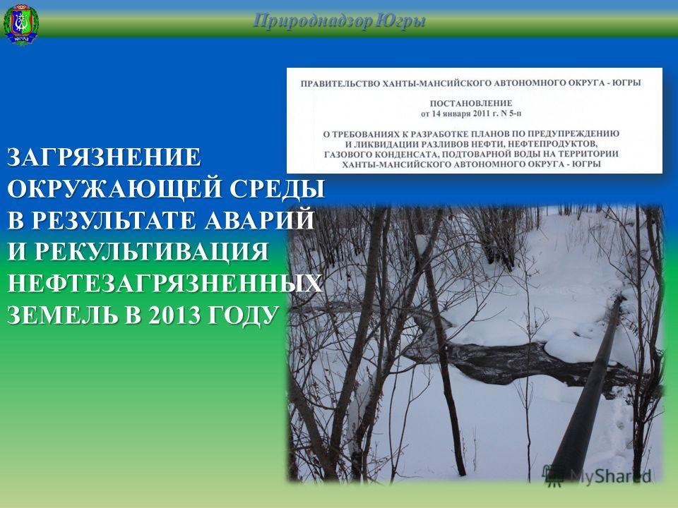Природнадзор Югры ЗАГРЯЗНЕНИЕ ОКРУЖАЮЩЕЙ СРЕДЫ В РЕЗУЛЬТАТЕ АВАРИЙ И РЕКУЛЬТИВАЦИЯ НЕФТЕЗАГРЯЗНЕННЫХ ЗЕМЕЛЬ В 2013 ГОДУ