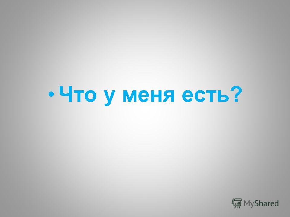 Что у меня есть?