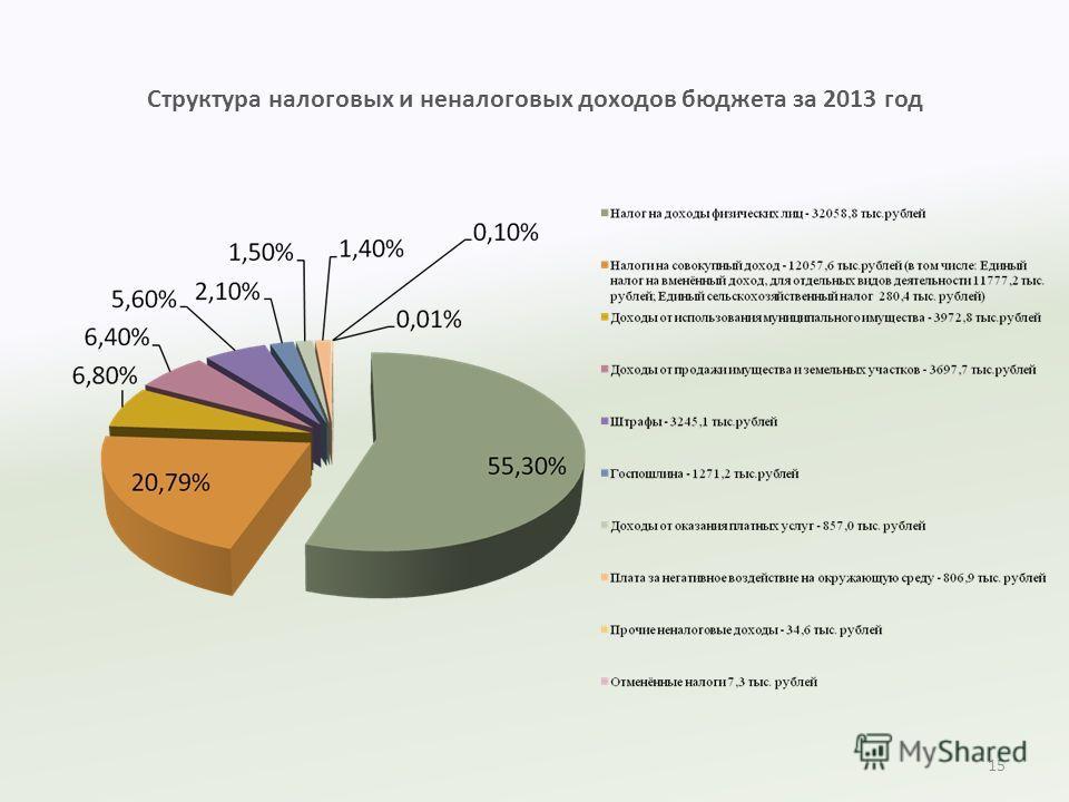 Структура налоговых и неналоговых доходов бюджета за 2013 год 15