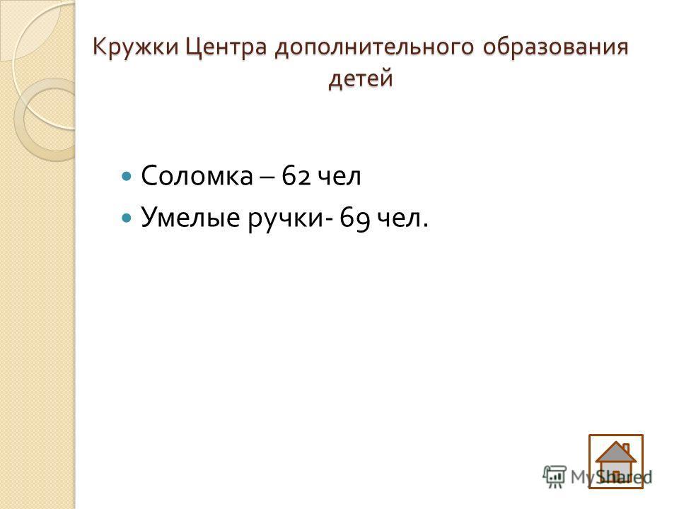 Кружки Центра дополнительного образования детей Соломка – 62 чел Умелые ручки - 69 чел.