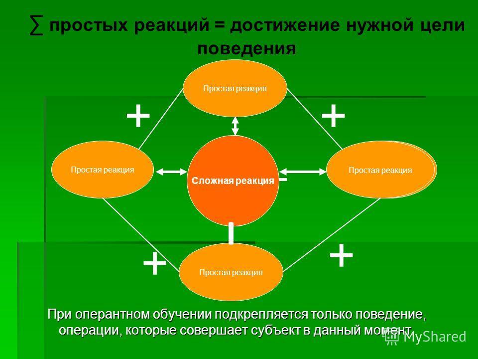 При оперантном обучении подкрепляется только поведение, операции, которые совершает субъект в данный момент. + ++ + простых реакций = достижение нужной цели поведения