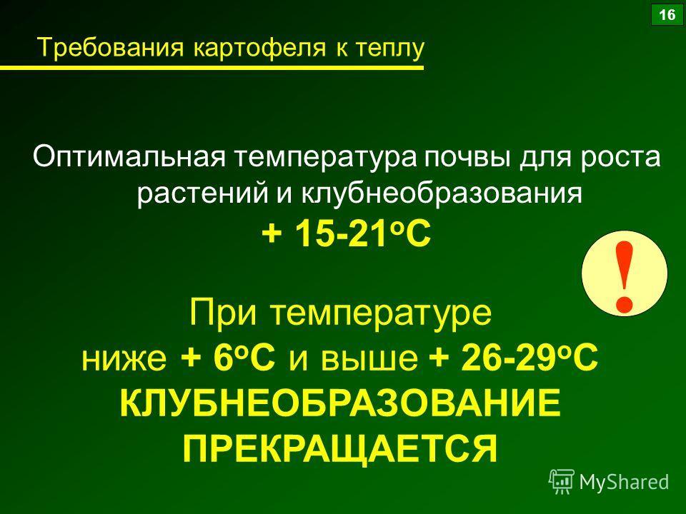 Требования картофеля к теплу Оптимальная температура почвы для роста растений и клубнеобразования + 15-21 о С При температуре ниже + 6 о С и выше + 26-29 о С КЛУБНЕОБРАЗОВАНИЕ ПРЕКРАЩАЕТСЯ ! 16