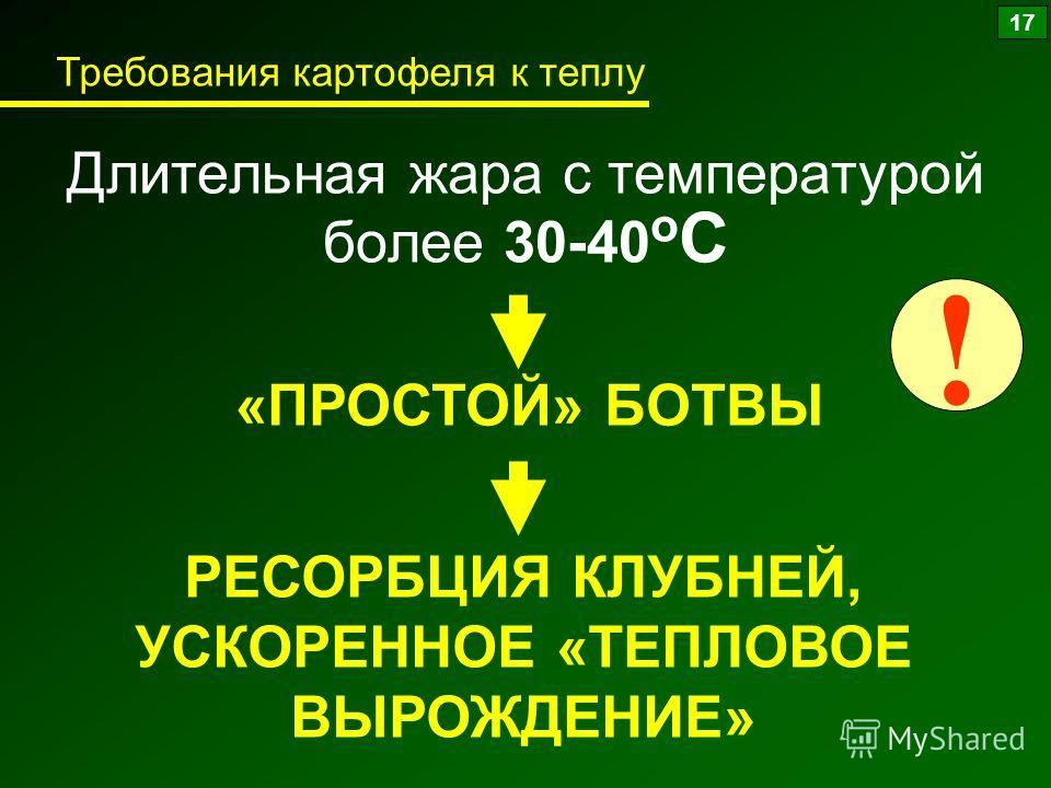 Длительная жара с температурой более 30-40 о С «ПРОСТОЙ» БОТВЫ РЕСОРБЦИЯ КЛУБНЕЙ, УСКОРЕННОЕ «ТЕПЛОВОЕ ВЫРОЖДЕНИЕ» ! 17 Требования картофеля к теплу