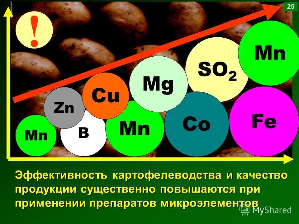 Эффективность картофелеводства и качество продукции существенно повышаются при применении препаратов микроэлементов Mn B Zn Mn SO 2 Fe Mn Co Cu Mg ! 25
