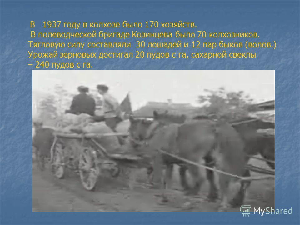 В 1937 году в колхозе было 170 хозяйств. В полеводческой бригаде Козинцева было 70 колхозников. Тягловую силу составляли 30 лошадей и 12 пар быков (волов.) Урожай зерновых достигал 20 пудов с га, сахарной свеклы – 240 пудов с га.