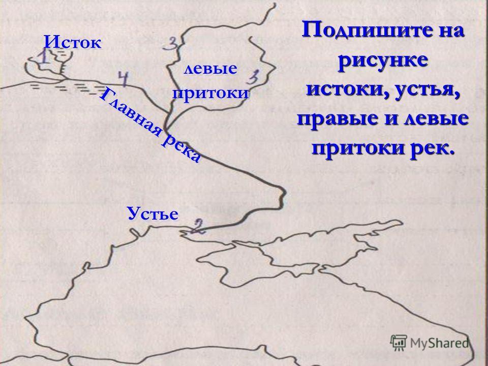 Подпишите на рисунке истоки, устья, правые и левые притоки рек. Исток Устье левые притоки левые притоки Главная река