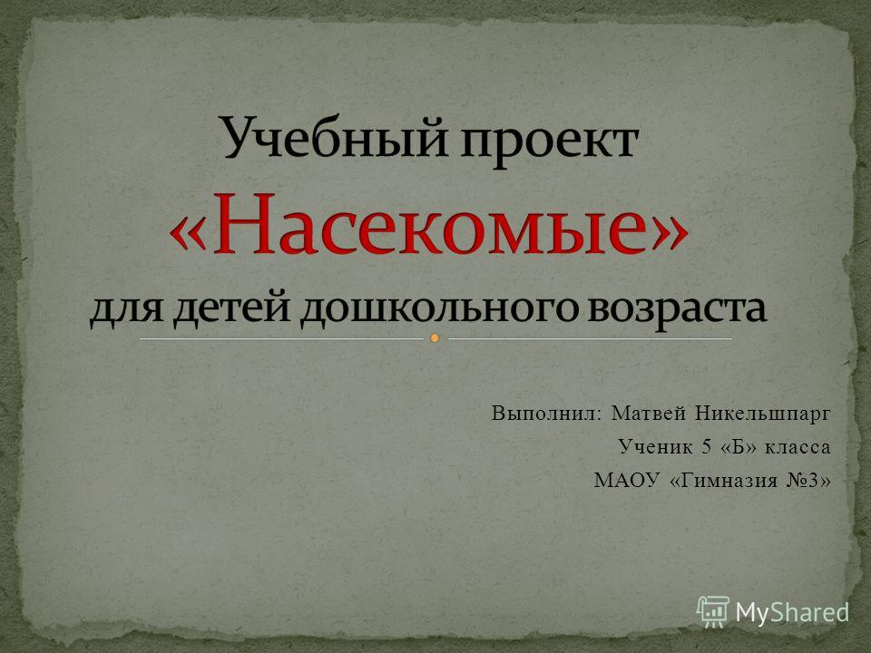 Выполнил: Матвей Никельшпарг Ученик 5 «Б» класса МАОУ «Гимназия 3»
