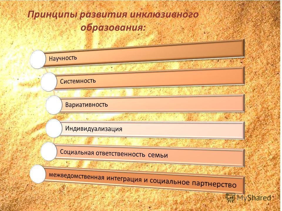 Принципы развития инклюзивного образования: