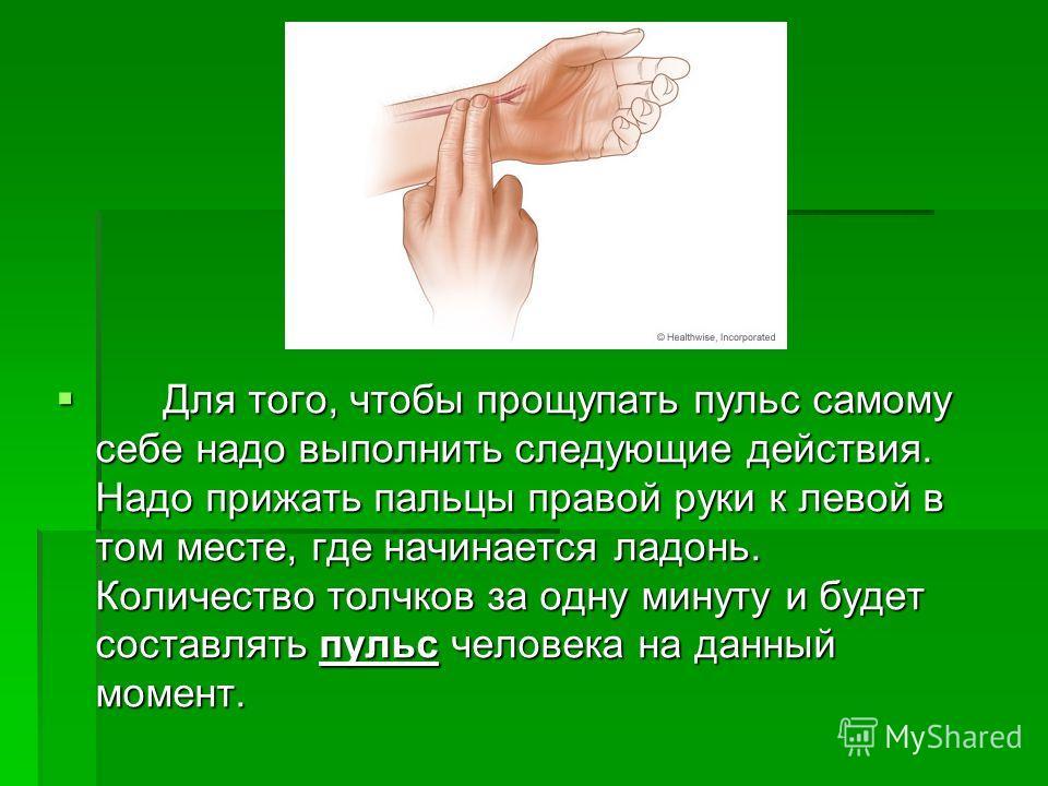 Для того, чтобы прощупать пульс самому себе надо выполнить следующие действия. Надо прижать пальцы правой руки к левой в том месте, где начинается ладонь. Количество толчков за одну минуту и будет составлять пульс человека на данный момент. Для того,