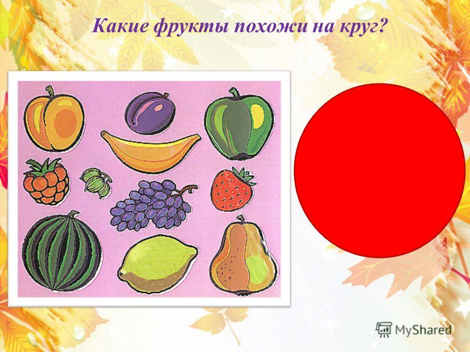 Какие фрукты похожи на круг?