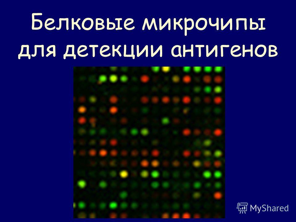 Белковые микрочипы для детекции антигенов