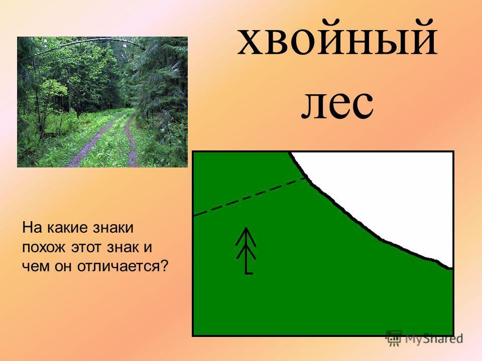 лиственный лес Какой цвет использован в качестве фона и почему?