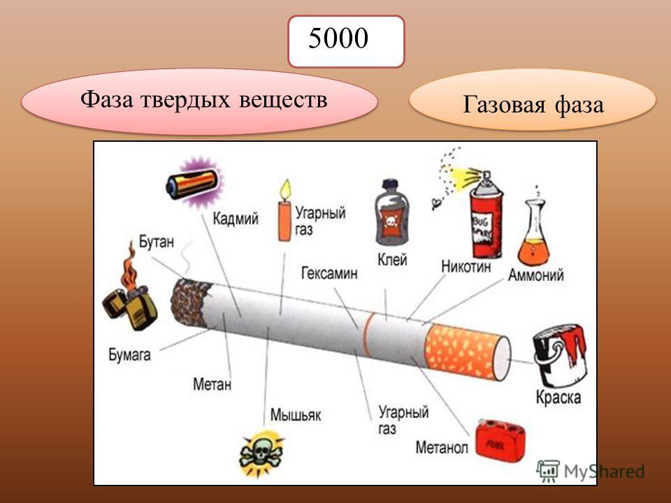 5000 Фаза твердых веществ Газовая фаза