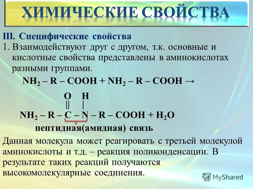 III. Специфические свойства 1. Взаимодействуют друг с другом, т.к. основные и кислотные свойства представлены в аминокислотах разными группами. NH 2 – R – COOH + NH 2 – R – COOH || | NH 2 – R – C – N – R – COOH + H 2 O пептидная(амидная) связь Данная