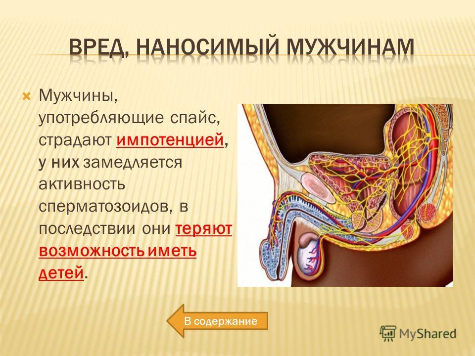 Импотенция лурк - alpha-bestseller.ru