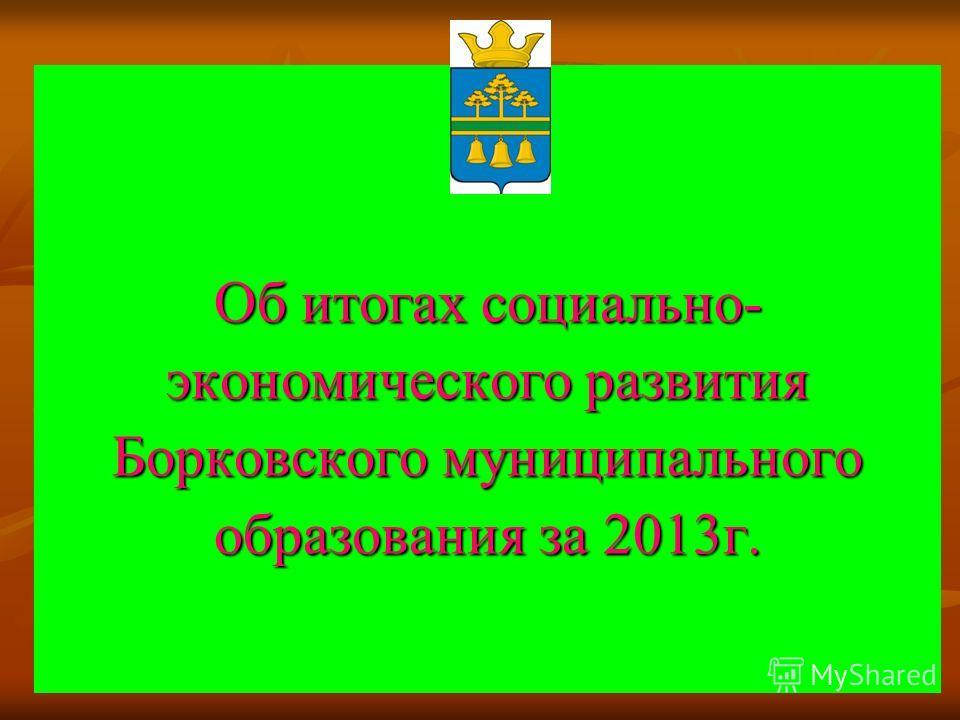Об итогах социально- экономического развития Борковского муниципального образования за 2013 г.