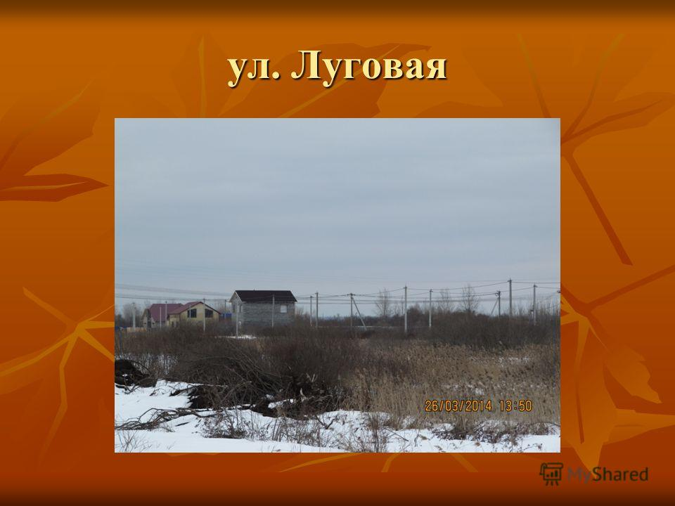 ул. Луговая