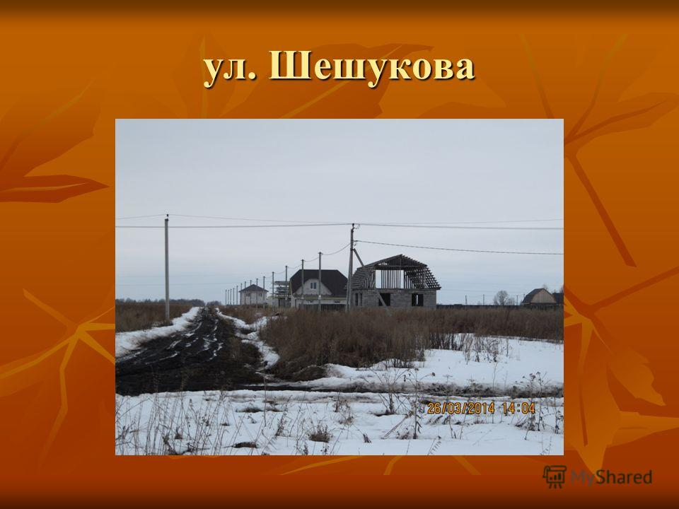 ул. Шешукова