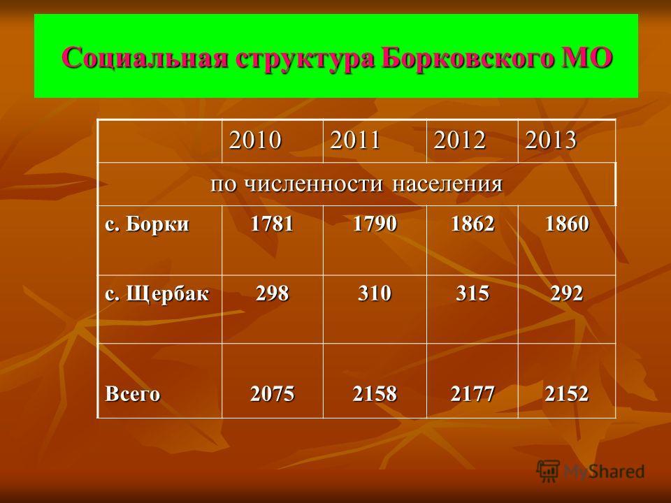 Социальная структура Борковского МО 2010201120122013 по численности населения с. Борки 1781179018621860 с. Щербак 298310315292 Всего 2075215821772152