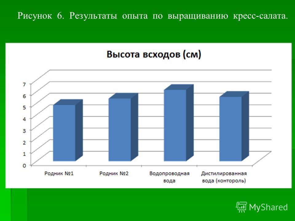 Рисунок 6. Результаты опыта по выращиванию кресс-салата.