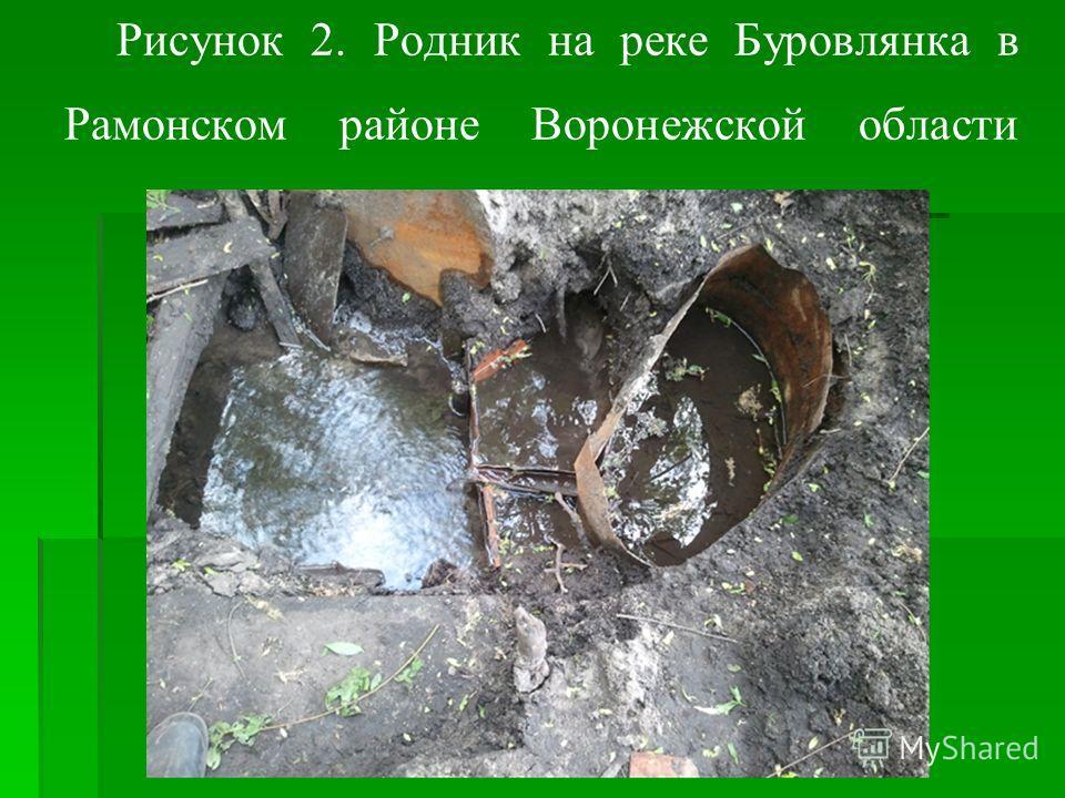 Рисунок 2. Родник на реке Буровлянка в Рамонском районе Воронежской области