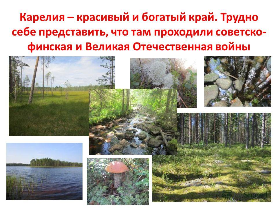 Карелия – красивый и богатый край. Трудно себе представить, что там проходили советско- финская и Великая Отечественная войны