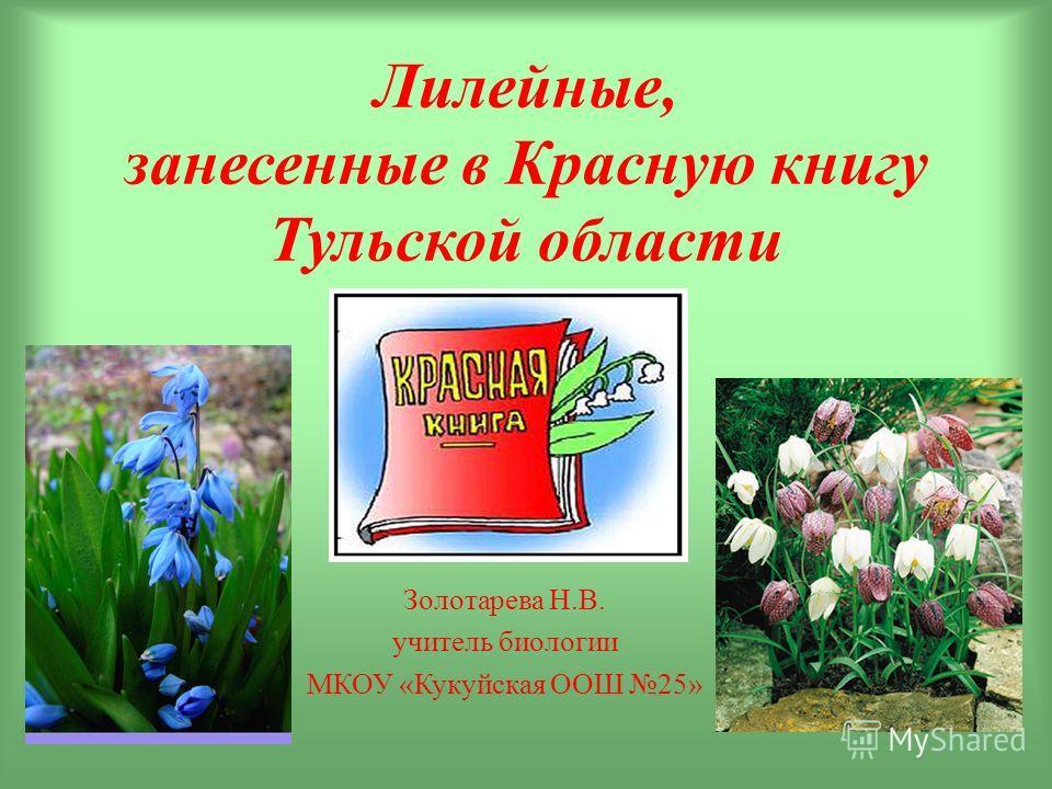 Лилейные, занесенные в Красную книгу Тульской области Золотарева Н.В. учитель биологии МКОУ «Кукуйская ООШ 25»
