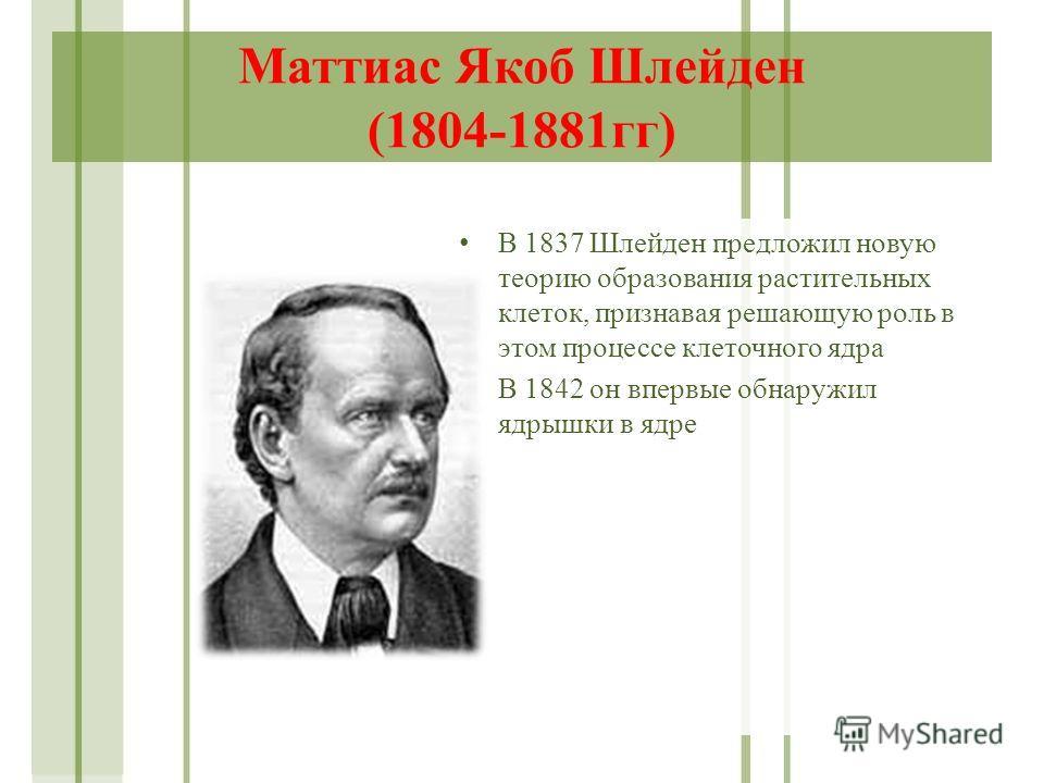 Маттиас Якоб Шлейден (1804-1881 гг) В 1837 Шлейден предложил новую теорию образования растительных клеток, признавая решающую роль в этом процессе клеточного ядра В 1842 он впервые обнаружил ядрышки в ядре