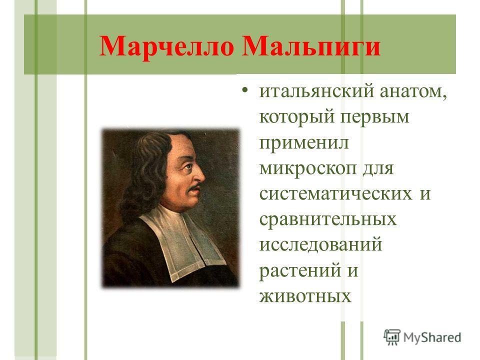 Марчелло Мальпиги итальянский анатом, который первым применил микроскоп для систематических и сравнительных исследований растений и животных