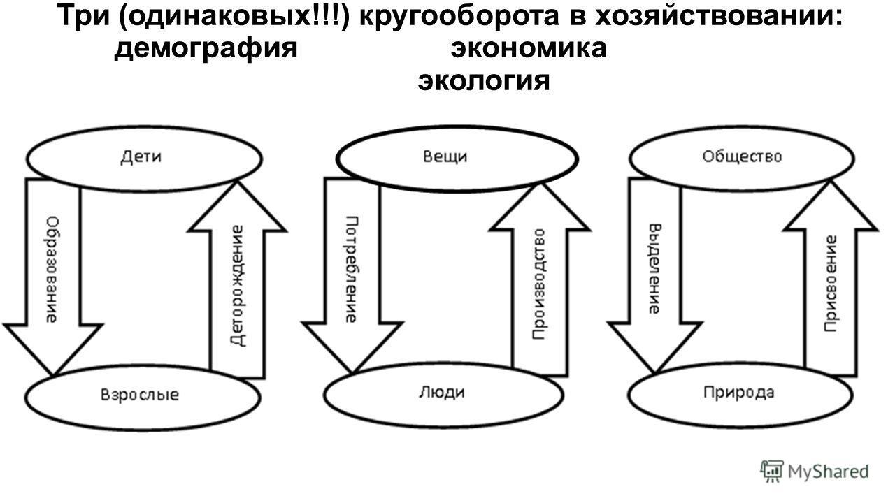 Три (одинаковых!!!) кругооборота в хозяйствовании: демографияэкономика экология