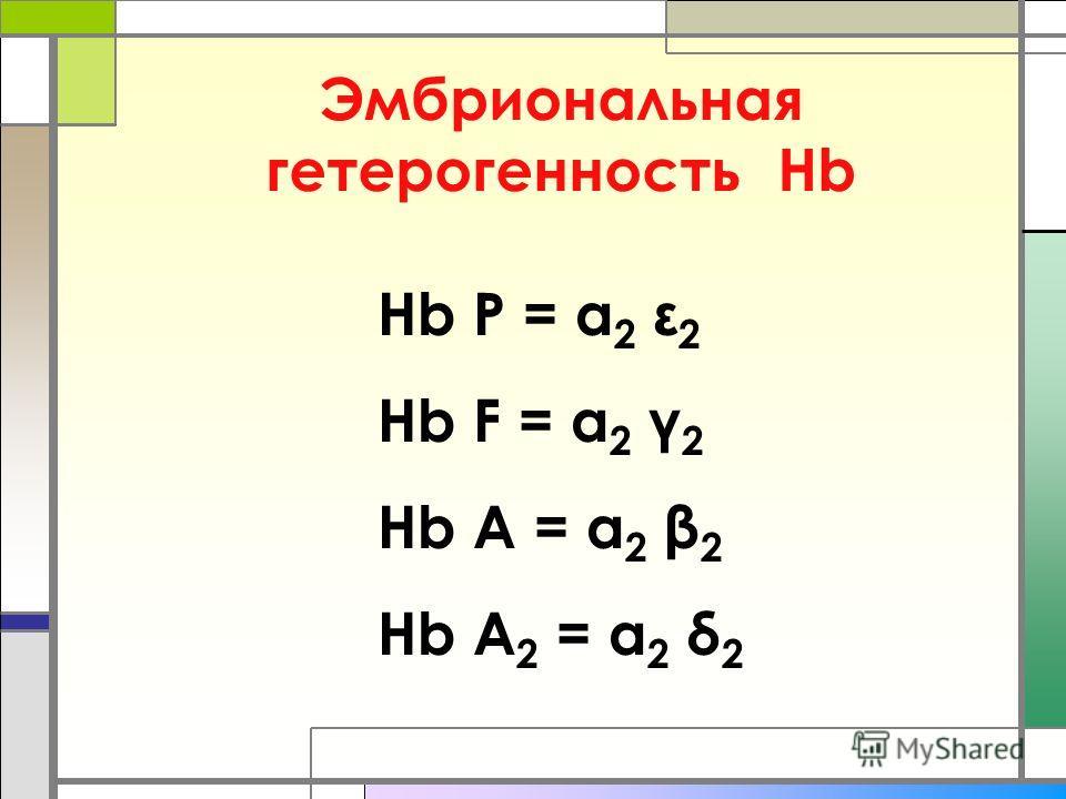 Эмбриональная гетерогенность Нb Нb P = α 2 ε 2 Hb F = α 2 γ 2 Hb A = α 2 β 2 Hb A 2 = α 2 δ 2