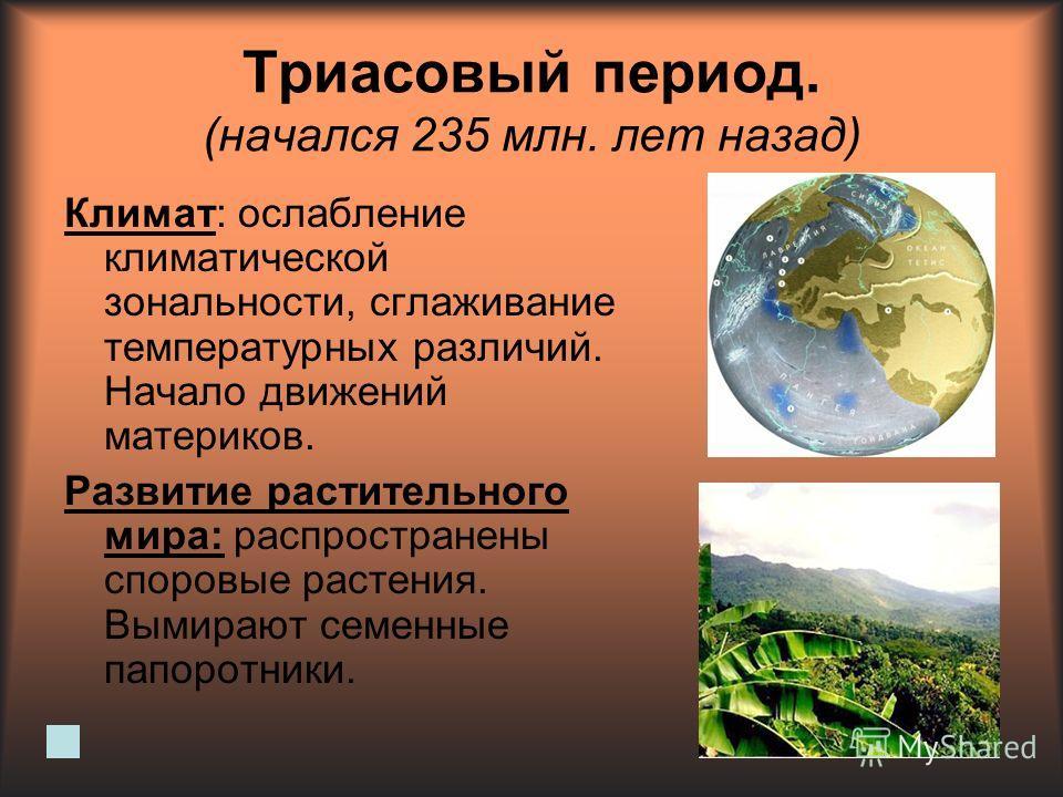 Триасовый период. (начался 235 млн. лет назад) Климат: ослабление климатической зональности, сглаживание температурных различий. Начало движений материков. Развитие растительного мира: распространены споровые растения. Вымирают семенные папоротники.