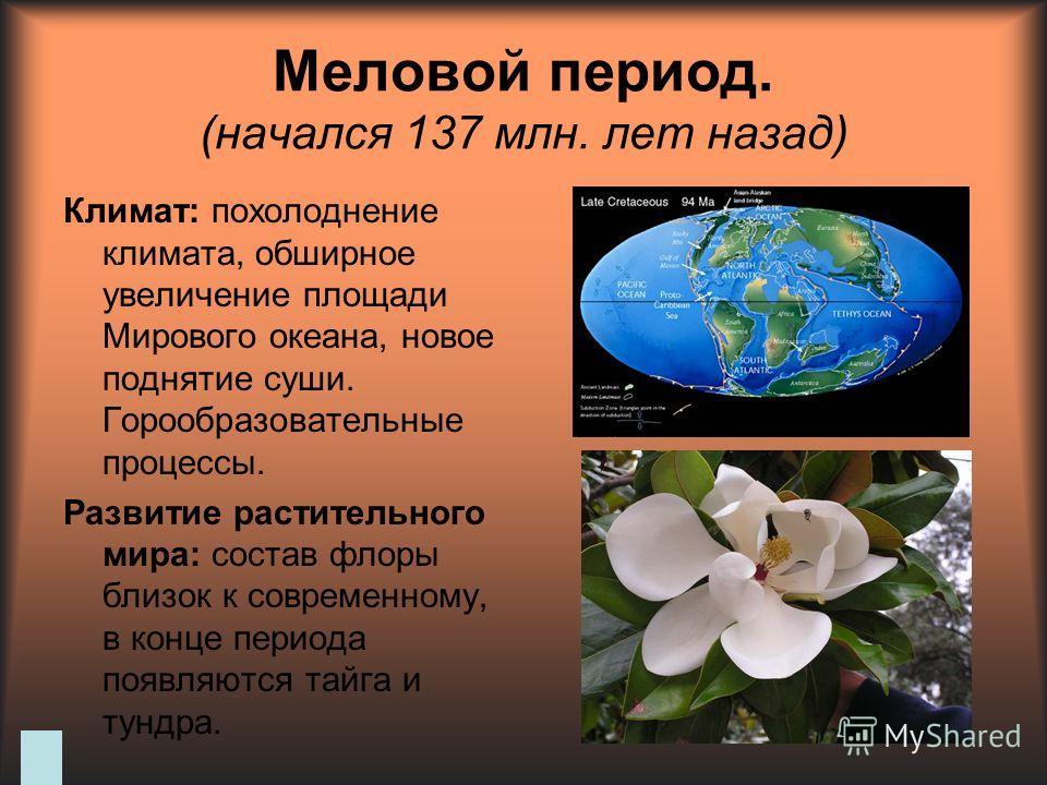 Меловой период. (начался 137 млн. лет назад) Климат: похолодание климата, обширное увеличение площади Мирового океана, новое поднятие суши. Горообразовательные процессы. Развитие растительного мира: состав флоры близок к современному, в конце периода