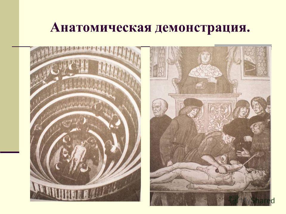 Анатомическая демонстрация.