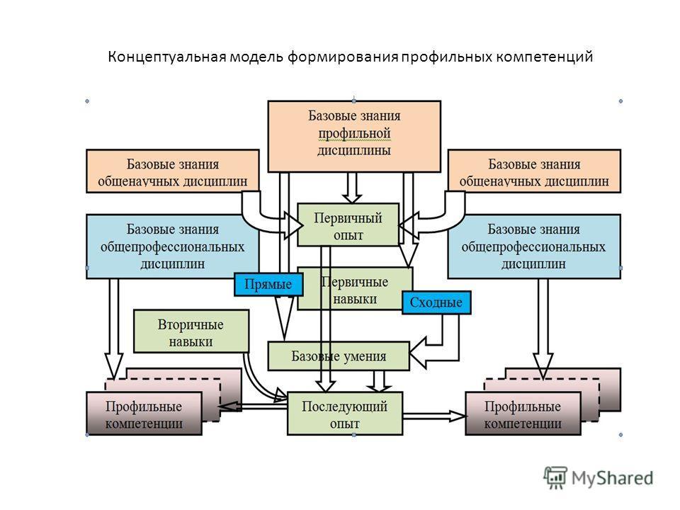 Концептуальная модель формирования профильных компетенций