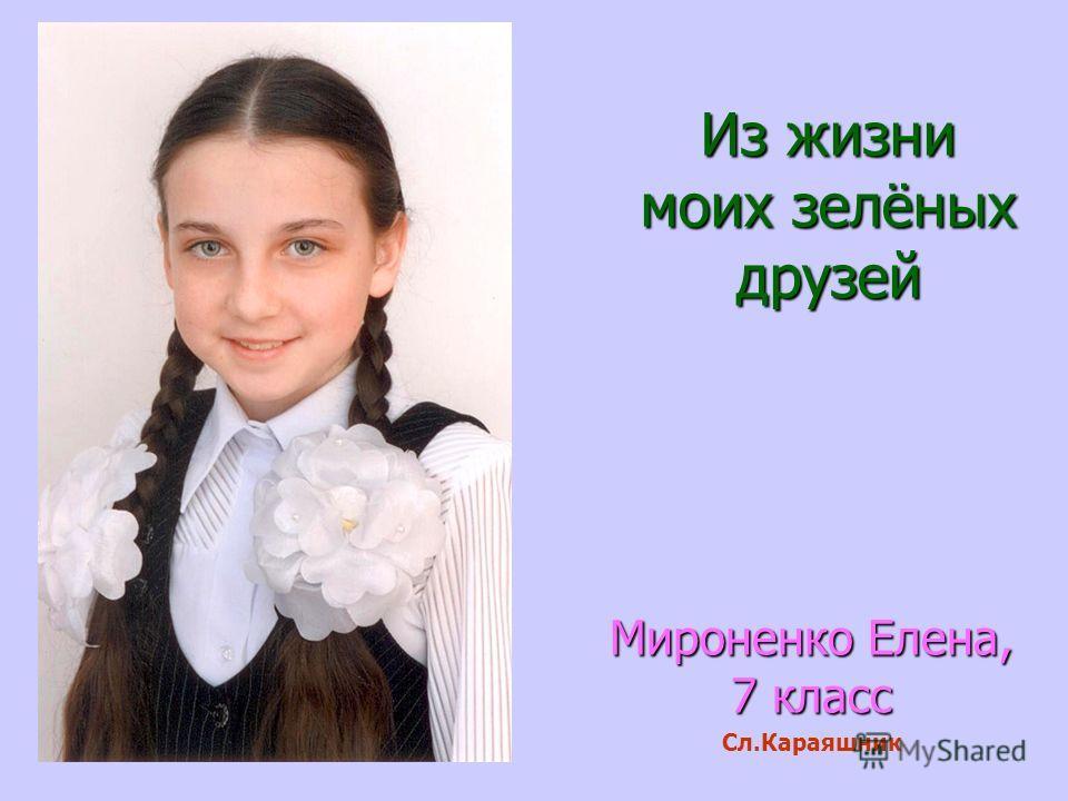 Из жизни моих зелёных друзей Мироненко Елена, 7 класс Сл.Караяшник