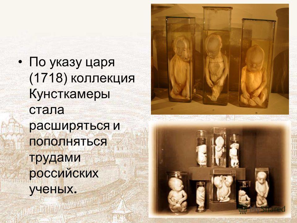 По указу царя (1718) коллекция Кунсткамеры стала расширяться и пополняться трудами российских ученых.