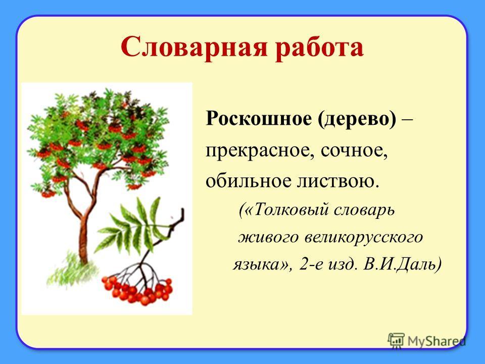 Словарная работа Роскошнот (дерево) – прекраснот, сочнот, обильнот листвою. («Толковый словарь живого великорусского языка», 2-е изд. В.И.Даль)