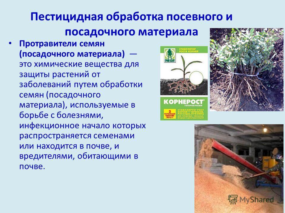 Пестицидная обработка посевного и посадочного материала Протравители семян (посадочного материала) это химические вещества для защиты растений от заболеваний путем обработки семян (посадочного материала), используемые в борьбе с болезнями, инфекционн