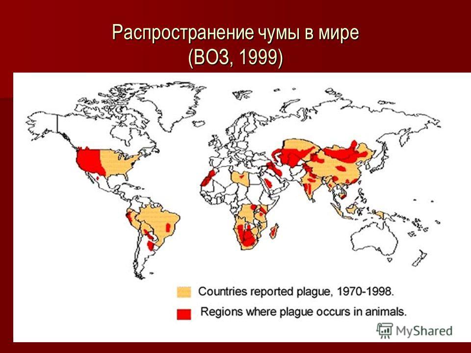 Распространение чумы в мире (ВОЗ, 1999)