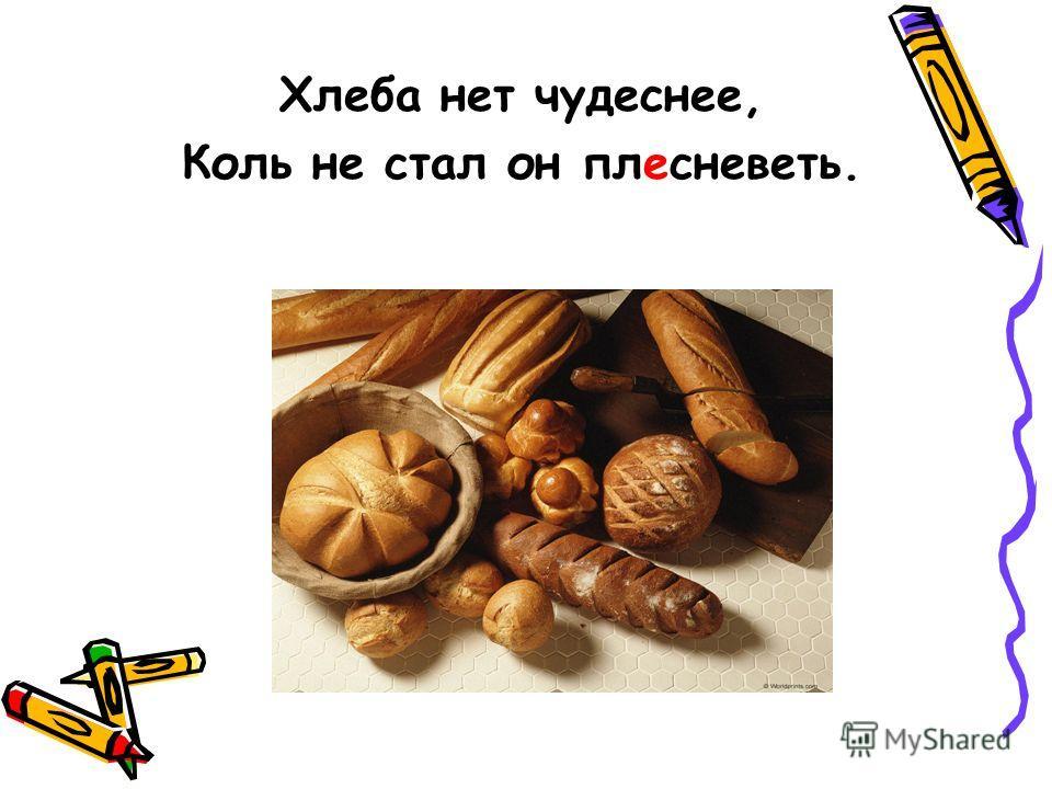 Хлеба нет чудеснее, Коль не стал он плесневеть.