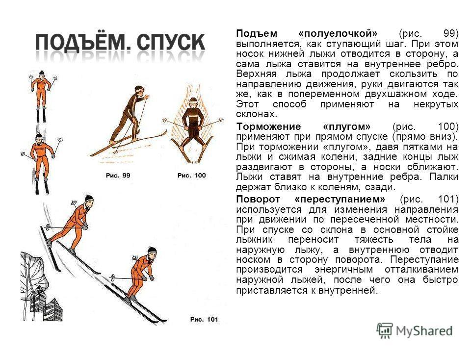 Подъем «полуелочкой» (рис. 99) выполняется, как ступающий шаг. При этом носок нижней лыжи отводится в сторону, а сама лыжа ставится на внутреннее ребро. Верхняя лыжа продолжает скользить по направлению движения, руки двигаются так же, как в поперемен